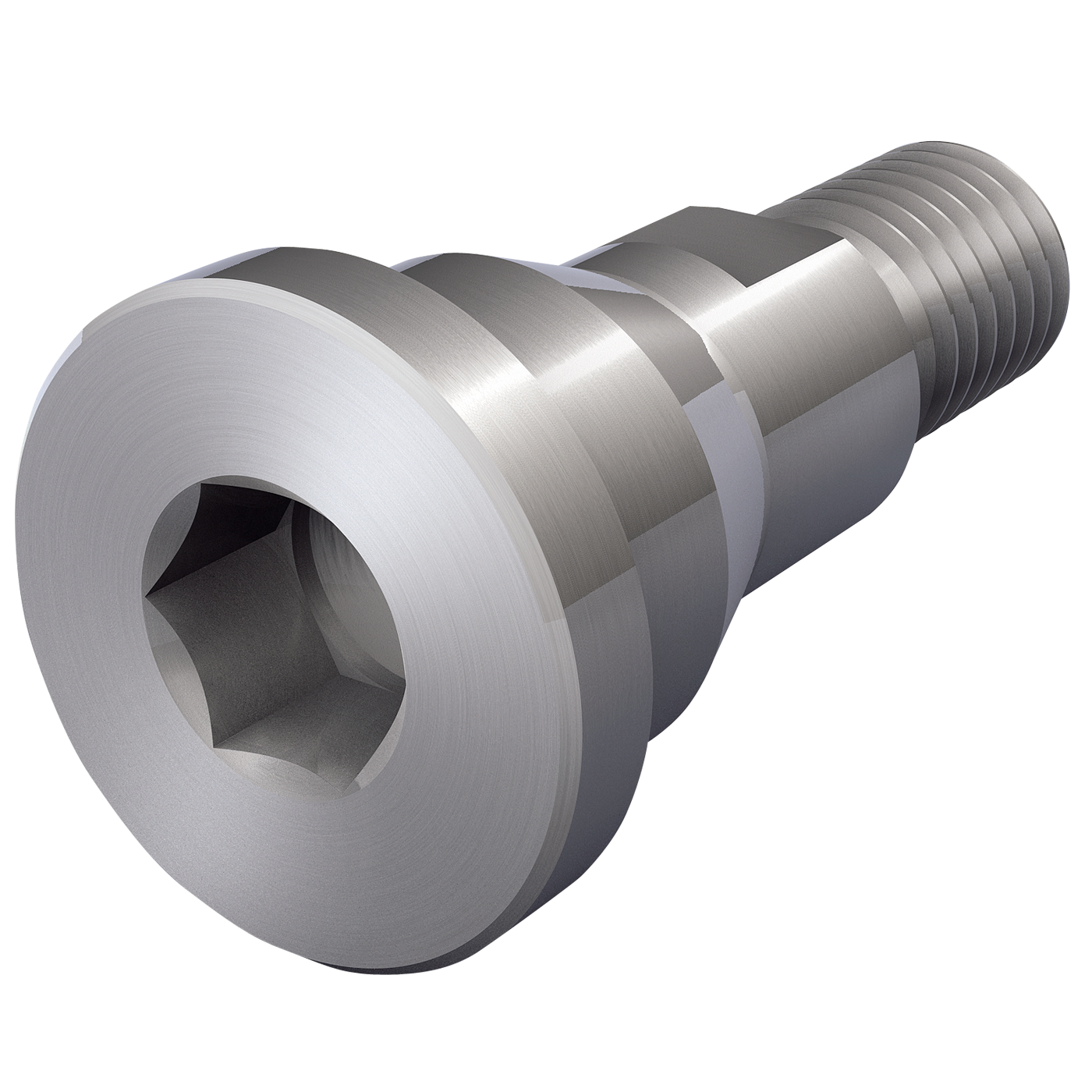 Special screw with internal hexagon and spanner surface